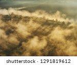 foggy spring morning.... | Shutterstock . vector #1291819612