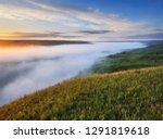 foggy spring morning.... | Shutterstock . vector #1291819618