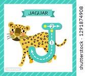 Letter J Uppercase Cute...
