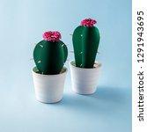 creative concept photo of paper ...   Shutterstock . vector #1291943695