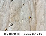 natural grunge texture of the... | Shutterstock . vector #1292164858