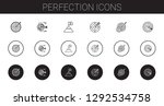 perfection icons set....