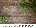 green leaves  herbs on wooden... | Shutterstock . vector #1292583565