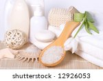 bath accessories | Shutterstock . vector #12926053