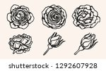 rose silhouette ornament... | Shutterstock .eps vector #1292607928