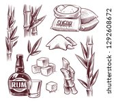 sketch sugar cane. sugarcane... | Shutterstock .eps vector #1292608672