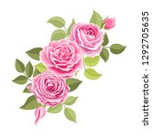 the rose elegant card.... | Shutterstock .eps vector #1292705635