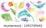 vivid colors tropical leaves... | Shutterstock .eps vector #1292739442