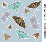 a variety of moths ready to be... | Shutterstock .eps vector #1292791435