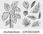 set of outline tropical leaves. ... | Shutterstock .eps vector #1292822605