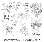 hello spring bunny set. cute... | Shutterstock .eps vector #1293006415