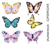 beautiful pink butterfly... | Shutterstock . vector #1293092245