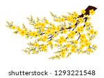 branch of yellow apricot flower ... | Shutterstock .eps vector #1293221548
