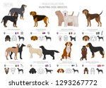 hunting dogs collection... | Shutterstock .eps vector #1293267772