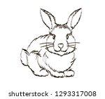 handdrawn cute rabbit. easter... | Shutterstock .eps vector #1293317008