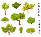 flat vector set of fruit trees... | Shutterstock .eps vector #1293361132