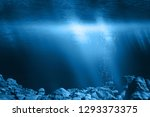 Sunbeams shine through the water surface to the seabed