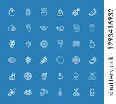 editable 36 ripe icons for web... | Shutterstock .eps vector #1293416932