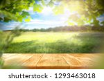 table background and spring... | Shutterstock . vector #1293463018