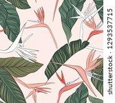 flowers vector green pink... | Shutterstock .eps vector #1293537715