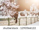 little cute boy is having fun... | Shutterstock . vector #1293566122
