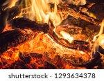 bonfire in the desert | Shutterstock . vector #1293634378