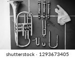 black and white photo of a... | Shutterstock . vector #1293673405