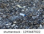 spilled garbage on the beach of ... | Shutterstock . vector #1293687022