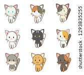 Character Cartoon Cat Set