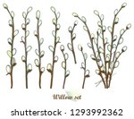 vector set with outline willow... | Shutterstock .eps vector #1293992362