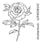 rose illustration  roses with... | Shutterstock . vector #1294038142