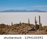 the incredible salt flat of... | Shutterstock . vector #1294133392
