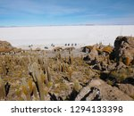 the incredible salt flat of... | Shutterstock . vector #1294133398
