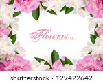 Pink and white peonies with copy space - stock photo