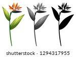 set of exotic flower...   Shutterstock .eps vector #1294317955