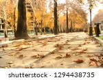 autumn leaves on valiasr street ... | Shutterstock . vector #1294438735
