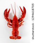 seafood from the ocean | Shutterstock . vector #1294618705