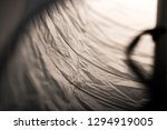lampshade close up crinkling... | Shutterstock . vector #1294919005