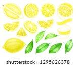 fresh lemon fruits and leaves... | Shutterstock . vector #1295626378