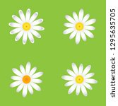 the chamomile flowers. set... | Shutterstock .eps vector #1295635705