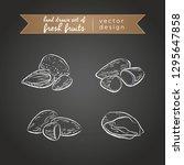 almond. set of fresh fruits ... | Shutterstock .eps vector #1295647858
