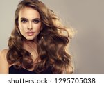 beauty girl with long  and  ... | Shutterstock . vector #1295705038