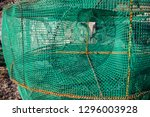 Fishing net trap for crabs close up