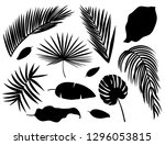 set of palm leaves silhouettes... | Shutterstock . vector #1296053815