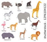 african animals set with titles.... | Shutterstock .eps vector #1296104122