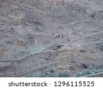 egypt  south sinai governorate  ... | Shutterstock . vector #1296115525