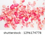 Stock photo valentine s day rose flowers petals on white background valentines day background flat lay top 1296174778