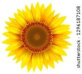 sunflower isolated  vector... | Shutterstock .eps vector #1296187108
