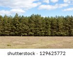 Tree Line Behind A Meadow At...