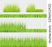 vector green grass bush ... | Shutterstock .eps vector #1296411922